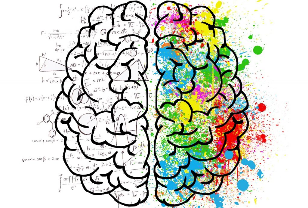 Emotional Intelligence and parts of the brain
